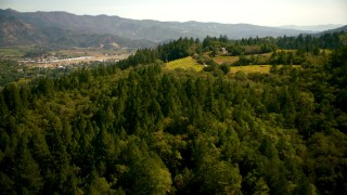 TS01_235 - 1080 stock footage aerial video of flying over a hilltop vineyard toward the town of Calistoga, California