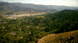 TS01_236 - 1080 stock footage aerial video of flying over a hilltop vineyard toward the small town of Calistoga, California
