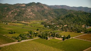 TS01_238 - 1080 stock footage aerial video fly over vineyards and homes toward mountains in Calistoga, California