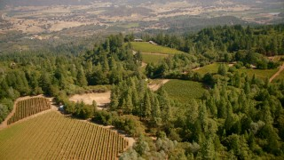 TS01_243 - 1080 stock footage aerial video of hilltop vineyards in Pope Valley, California