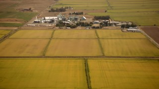 TS01_277 - 1080 stock footage aerial video tilt from farm fields to reveal a dairy farm in Pleasant Grove, California