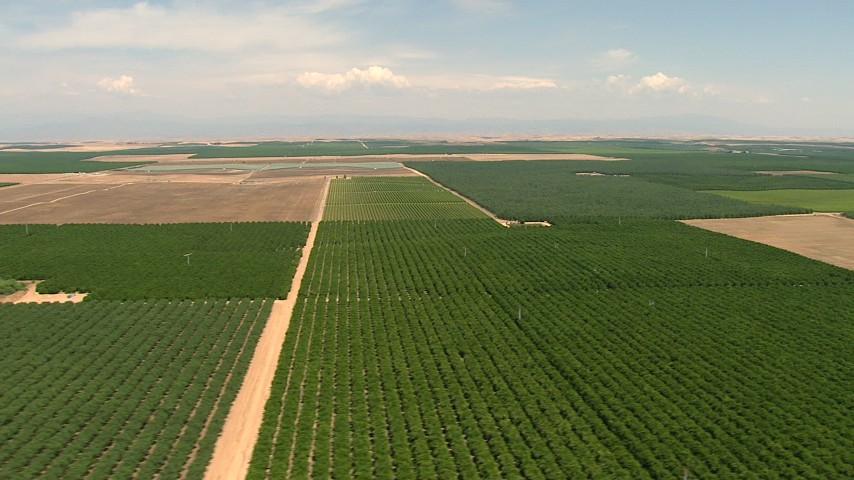 HD stock footage aerial video flyby farmland and crop fields in the Central Valley, California Aerial Stock Footage | AF0001_000002