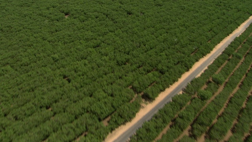 HD stock footage aerial video tilt from crops to reveal agricultural buildings, Central Valley, California Aerial Stock Footage | AF0001_000008