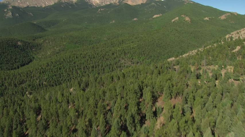 HD stock footage aerial video tilt from evergreen forest to reveal Pikes Peak, Colorado Aerial Stock Footage | AF0001_000085