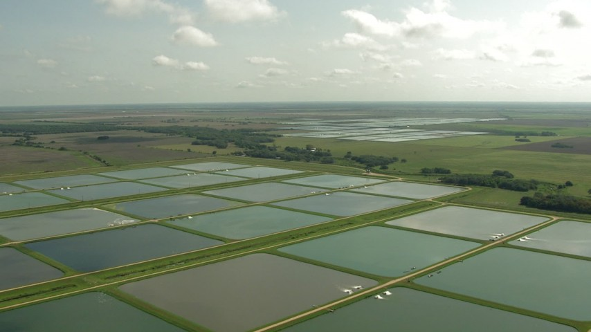 HD stock footage aerial video of flying over fields and fish farms, Danevang, Texas Aerial Stock Footage | AF0001_000226