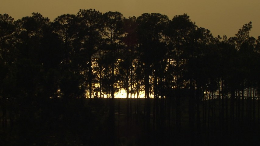 HD stock footage aerial video flyby trees, reveal a bay reflecting the setting sun, Gulf Coast, Alabama, sunset Aerial Stock Footage | AF0001_000429