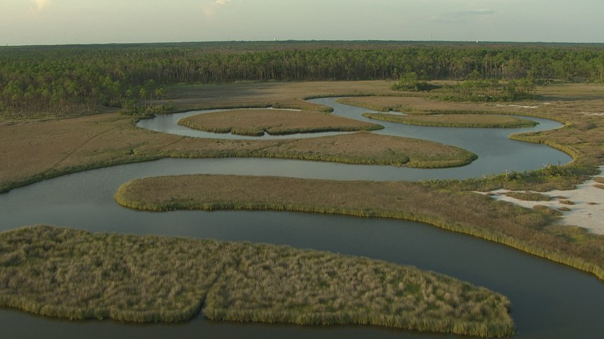 HD stock footage aerial video fly over river and wetlands to approach forest edge at sunset, Gulf Coast, Alabama Aerial Stock Footage | AF0001_000437
