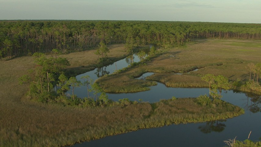 HD stock footage aerial video follow the river through marsh toward the forest at sunset, Gulf Coast, Alabama Aerial Stock Footage | AF0001_000439