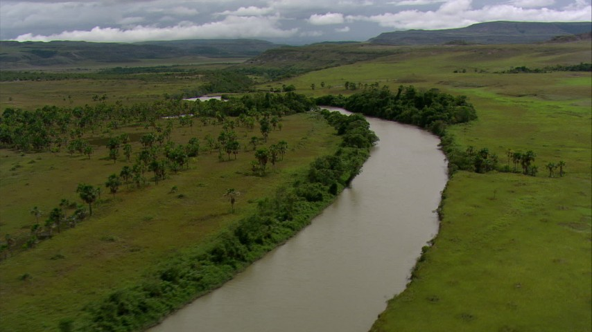 HD stock footage aerial video of a river running through savanna past palm trees, Southern Venezuela Aerial Stock Footage | AF0001_000528