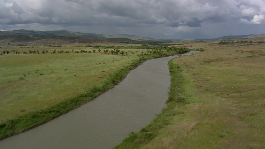Pan across a river and palm trees in the savanna, Southern Venezuela Aerial Stock Footage | AF0001_000533