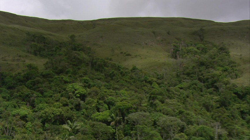Fly over jungle trees to approach green mountains in Southern Venezuela Aerial Stock Footage | AF0001_000544