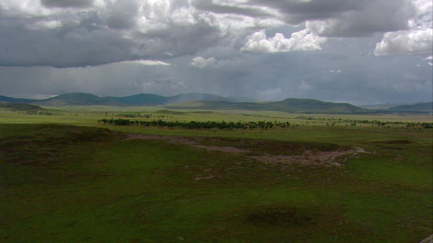 HD stock footage aerial video of reverse view of palm trees, savanna, and pan across green mountains in Southern Venezuela Aerial Stock Footage | AF0001_000650
