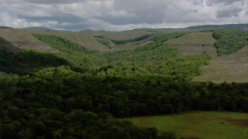 Zoom to a closer view of jungle by mountains in Southern Venezuela Aerial Stock Footage | AF0001_000651