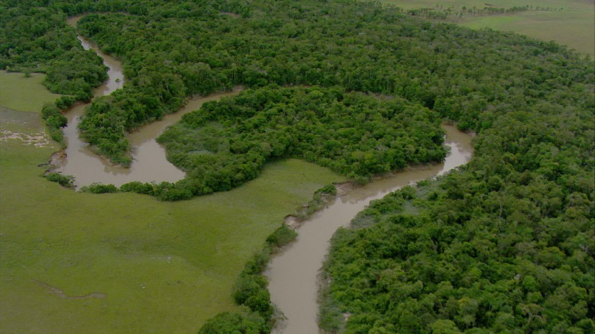 Fly over a tree-lined bend in the river in Southern Venezuela Aerial Stock Footage | AF0001_000659