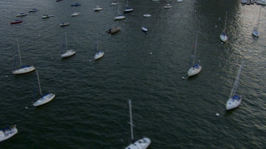 HD stock footage aerial video of flying low past sailboats on the Charles River, Boston, Massachusetts, sunset Aerial Stock Footage | AF0001_000789