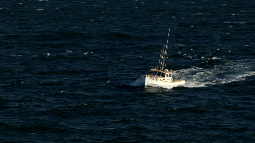 HD stock footage aerial video of a fishing boat followed by seagulls on the Atlantic Ocean Aerial Stock Footage | AF0001_000822