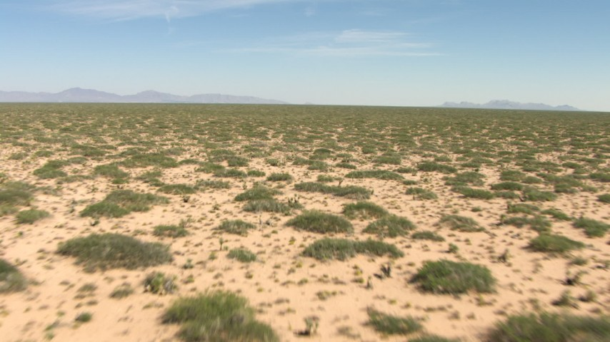 HD stock footage aerial video of desert plants in a wide, arid plain in New Mexico Aerial Stock Footage | AF0001_000901