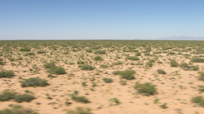 Passing desert vegetation on a wide desert plain in New Mexico Aerial Stock Footage | AF0001_000905