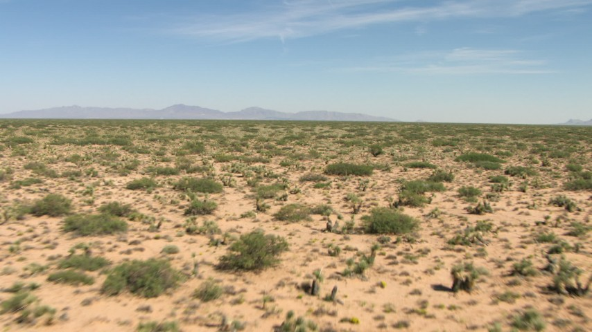 Desert vegetation on a wide plain in New Mexico Aerial Stock Footage | AF0001_000906