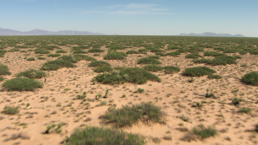 Low altitude flight over plants in a desert plain in New Mexico Aerial Stock Footage AF0001_000911 | Axiom Images