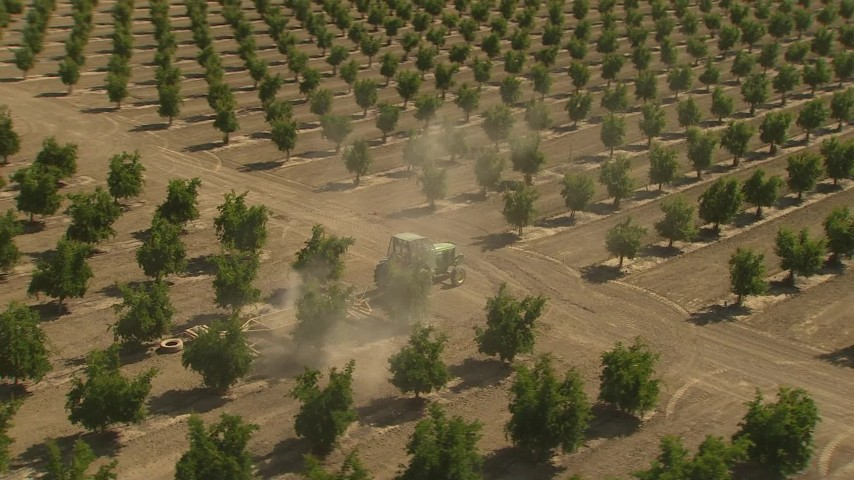 1080 stock footage aerial video orbiting a tractor driving by rows of crops, zoom out, Central Valley, California Aerial Stock Footage | AI06_FRM_005