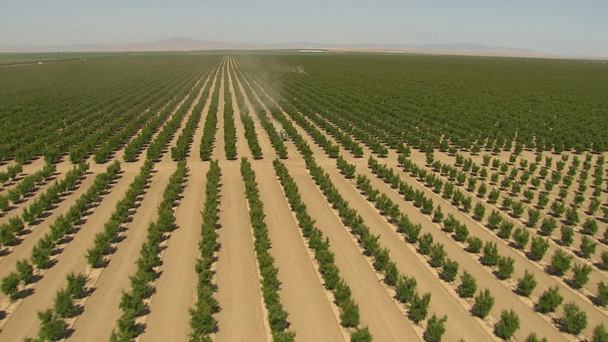 1080 stock footage aerial video flying low over crops, revealing and approaching a tractor, Central Valley, California Aerial Stock Footage   AI06_FRM_006
