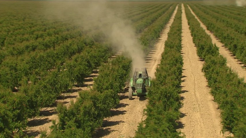 1080 stock footage aerial video flying low over crops, revealing tractor, Central Valley, California Aerial Stock Footage | AI06_FRM_013