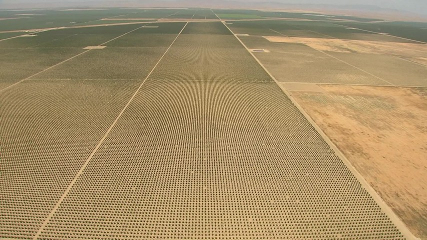 1080 stock footage aerial video flying high over farmland, tilt down to crops, Central Valley, California Aerial Stock Footage   AI06_FRM_036