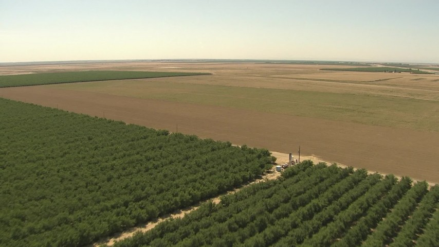 1080 aerial \video flying over orchard, approaching open farmland, Central Valley, California Aerial Stock Footage | AI06_FRM_048