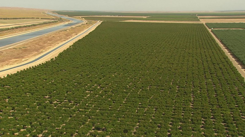 1080 stock footage aerial video flying over crops near canals, Central Valley, California Aerial Stock Footage   AI06_FRM_049