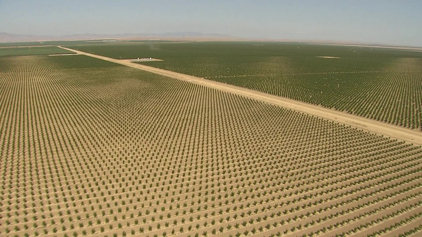 1080 stock footage aerial video fly over fields, crops, dry canals, manmade pond, Central Valley, California Aerial Stock Footage   AI06_FRM_052