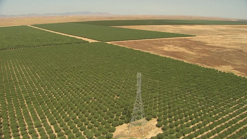 1080 stock footage aerial video flying over crops, power lines, approach open fields, Central Valley, California Aerial Stock Footage | AI06_FRM_053