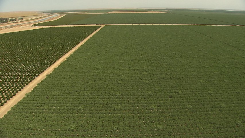 1080 stock footage aerial video flying over fields of crops, approaching irrigation canals, Central Valley, California Aerial Stock Footage | AI06_FRM_057