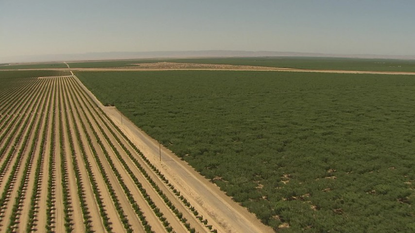 1080 stock footage aerial video flying over orchards, dirt road, Central Valley, California Aerial Stock Footage | AI06_FRM_079