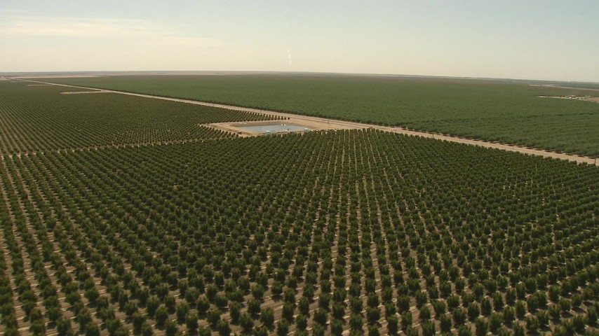 1080 stock footage aerial video fly over orchard to pond and tractor, Central Valley, California Aerial Stock Footage | AI06_FRM_104