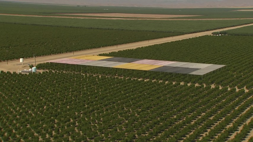 1080 stock footage aerial video flying by a covered section of trees in an orchard, Central Valley, California Aerial Stock Footage | AI06_FRM_116
