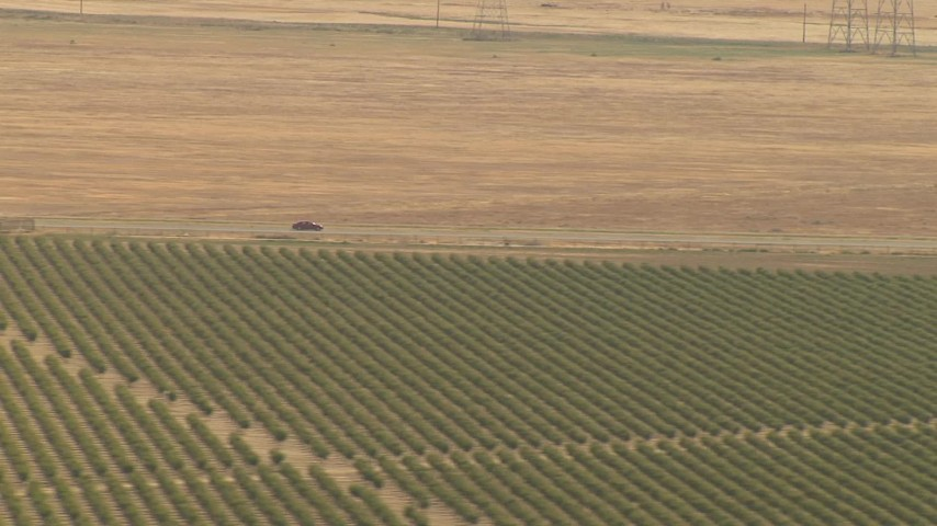 1080 stock footage aerial video track cars on a highway near orchard, Central Valley, California Aerial Stock Footage   AI06_FRM_124