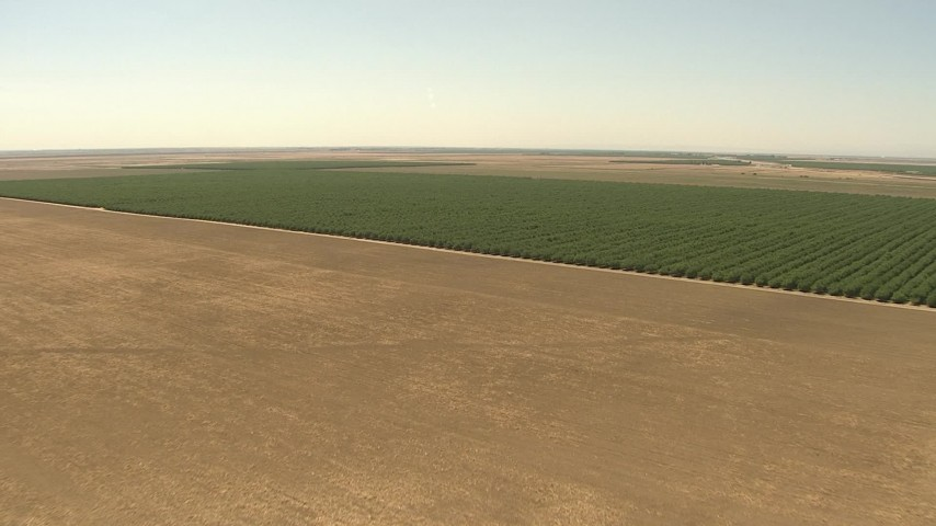1080 stock footage aerial video fly over open fields, approach orchards, Central Valley, California Aerial Stock Footage | AI06_FRM_125