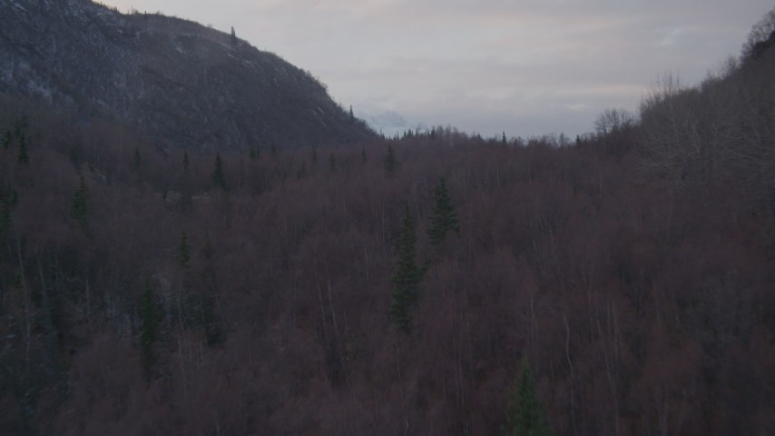 4K aerial video over wooded foothills, reveal Chugach Mountains, Chugach National Forest, Alaska Aerial Stock Footage | AK0001_0063