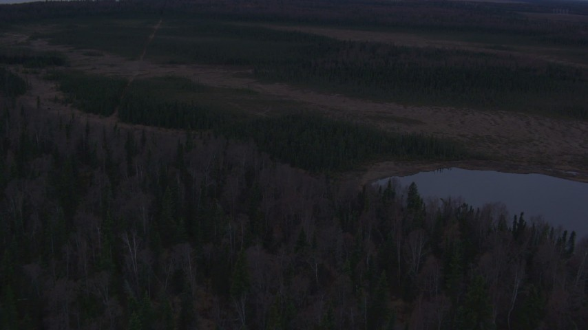 4K stock footage aerial video flying over shore, tilt down to closeup of trees, small lake, Point MacKenzie, Alaska Aerial Stock Footage | AK0001_0171