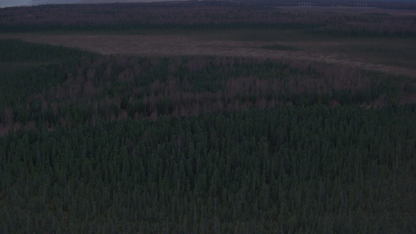4K stock footage aerial video approaching a forest, valley, Point MacKenzie, Alaska Aerial Stock Footage | AK0001_0172