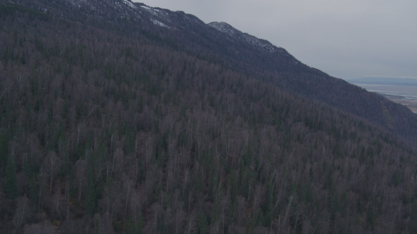 4K stock footage aerial video ascending the forested slope of the Chugach Mountains, Alaska Aerial Stock Footage | AK0001_0223