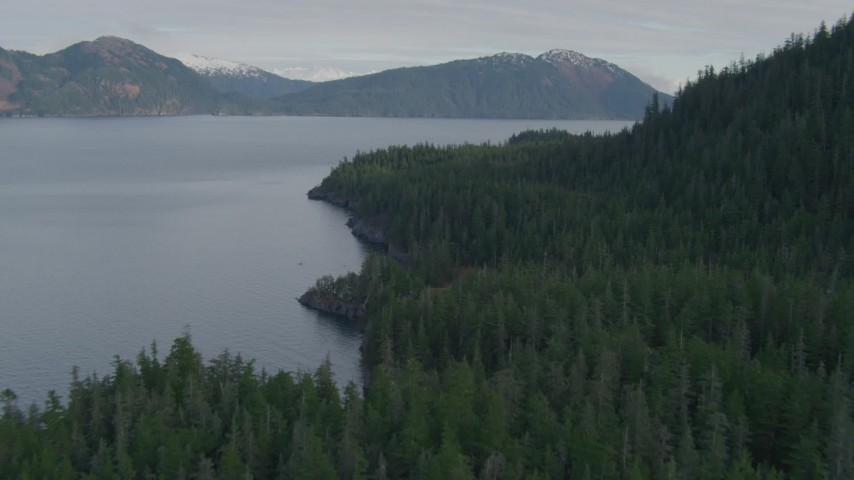 4K stock footage aerial video forested shoreline of the canal, Prince William Sound, Passage Canal, Alaska Aerial Stock Footage | AK0001_0405