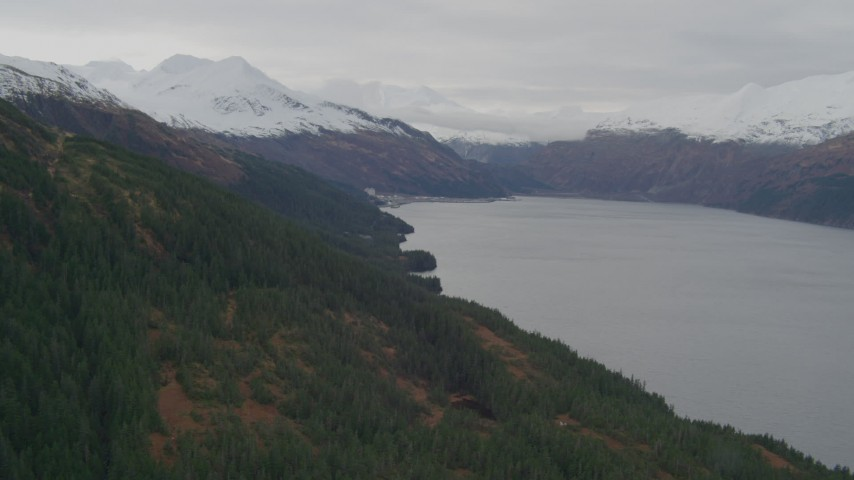 4K stock footage aerial video flying along wooded shoreline, approaching Whittier, Alaska Aerial Stock Footage | AK0001_0495