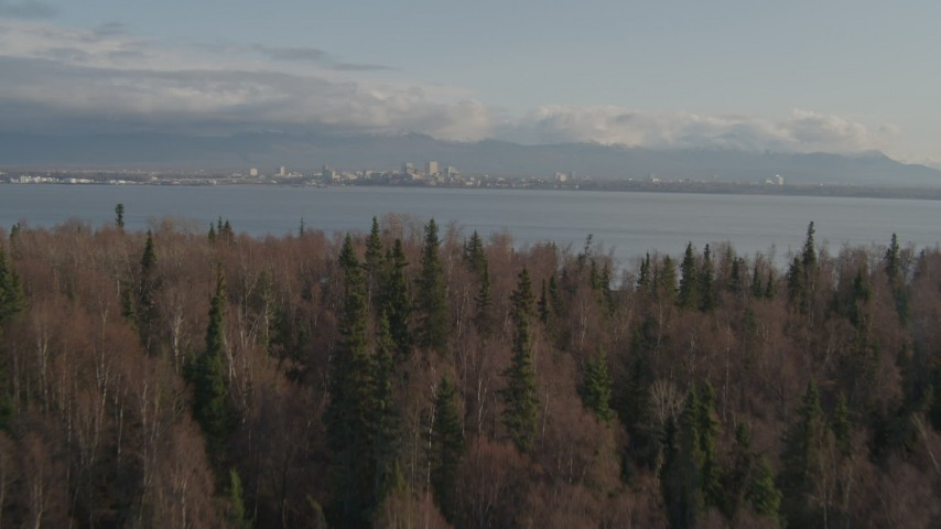 4K stock footage aerial video over trees, reveal Downtown Anchorage across inlet, Point MacKenzie, Alaska Aerial Stock Footage | AK0001_0596