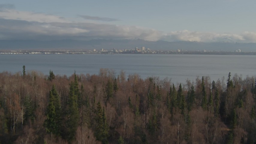 4K stock footage aerial video fly low over grassland, trees reveal Downtown Anchorage, Point MacKenzie, Alaska Aerial Stock Footage | AK0001_0597