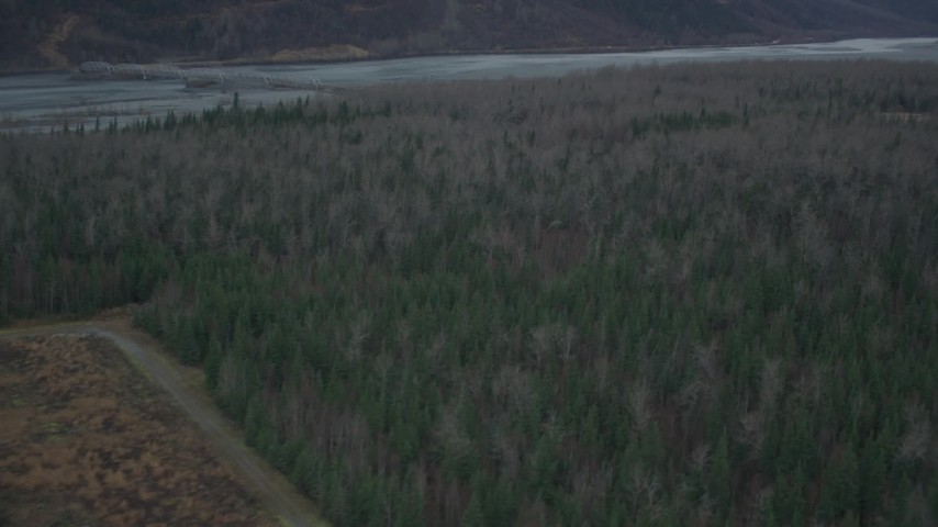 4K stock footage aerial video flying over forest, approach and reveal river, during winter, Butte, Alaska Aerial Stock Footage | AK0001_0695