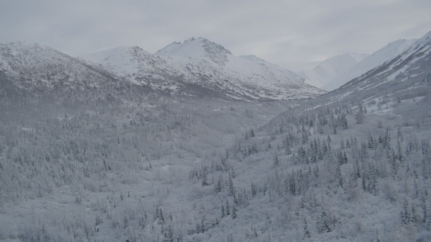 4K stock footage aerial video flying by frosty wooded valley, snow-covered Chugach Mountains, Alaska Aerial Stock Footage | AK0001_0754