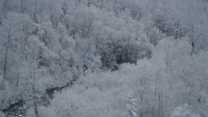 4K stock footage aerial video flying along river, frost-covered trees, winter, Chugach Mountains, Alaska Aerial Stock Footage | AK0001_0761
