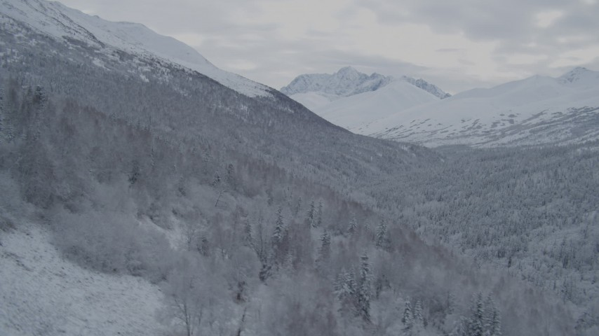 4K stock footage aerial video flying up slope from forested valley, winter, Chugach Mountains, Alaska Aerial Stock Footage | AK0001_0763
